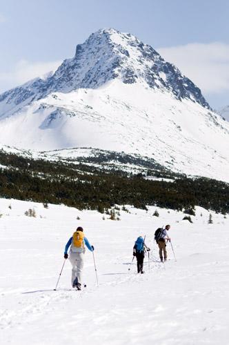 snow-trio1
